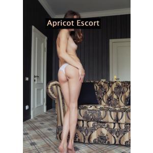 Dana 25 Jahre - Apricot Escort